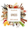 culinary spices big set under squire emblem vector image