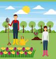 couple gardeners with tools and flowers tree field vector image