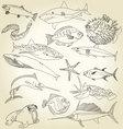 ocean life vector image