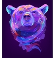 The cute colored bear head vector image