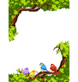 Birds on the branch of a tree vector image
