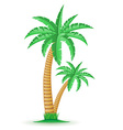 palm 04 vector image