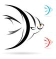 Angel fish vector image
