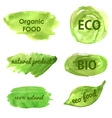 Ecological and nature banners Go green vector image