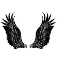 eagle wing vector image