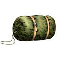 Camouflage sleeping bag on white vector image