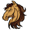 mustang stallion mascot cartoon image vector image