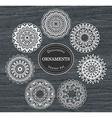 Set of 7 round decorative ornaments vector image