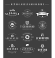 Retro Logotypes set vintage graphics design vector image vector image