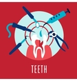 Teeth and dentistry concept vector image
