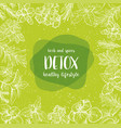detox label herbs and spices engraving vector image