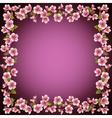 Floral frame sakura blossom background vector image