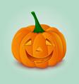 Halloween pumpkin lantern vector image