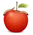 red apple with two worms on it vector image vector image