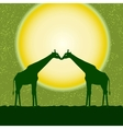 card with two giraffes vector image