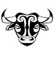 head of a bull vector image
