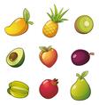 FruitSet vector image