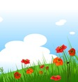 summer grassy field and poppies flowers background vector image
