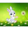 Little bunny walking on grass background vector image