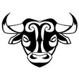 head of a bull vector image