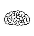 Outline Human Brain vector image