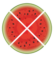 watermelon slices vector image vector image