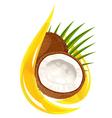 coconut oil vector image