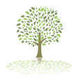 green summer tree vector image