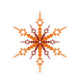 winter snowflake isolated icon vector image