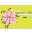 beautiful pink flower vector image