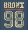 vintage bronx typography vector image