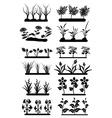 Flower fields set vector image