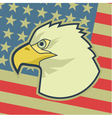 American classic flag vector image