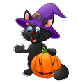 Black cat wearing witch hat vector image