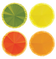 Geometric Fruit Slices vector image vector image