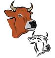 Cows head vector image