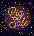 sale banner with text and bokeh lights vector image