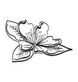 cute flower decorative icon vector image