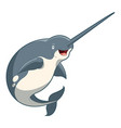 cartoon smiling narwhal vector image vector image
