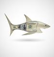 Dollar shark vector image vector image