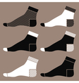 Socks vector image