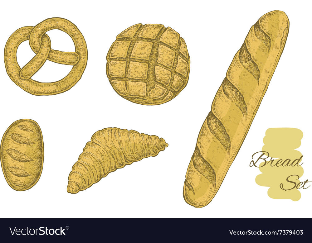 Collection of hand drawn bakery objects vector