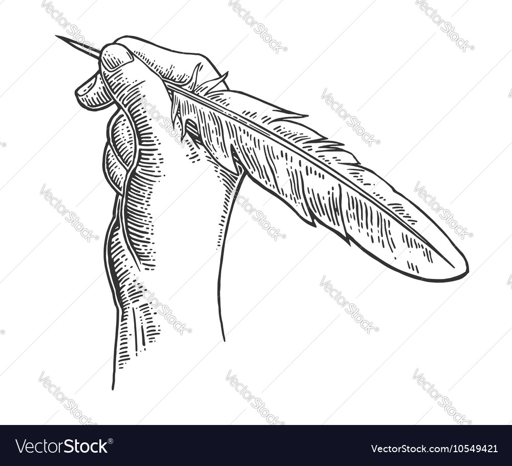 Female hand holding a goose feather black vector