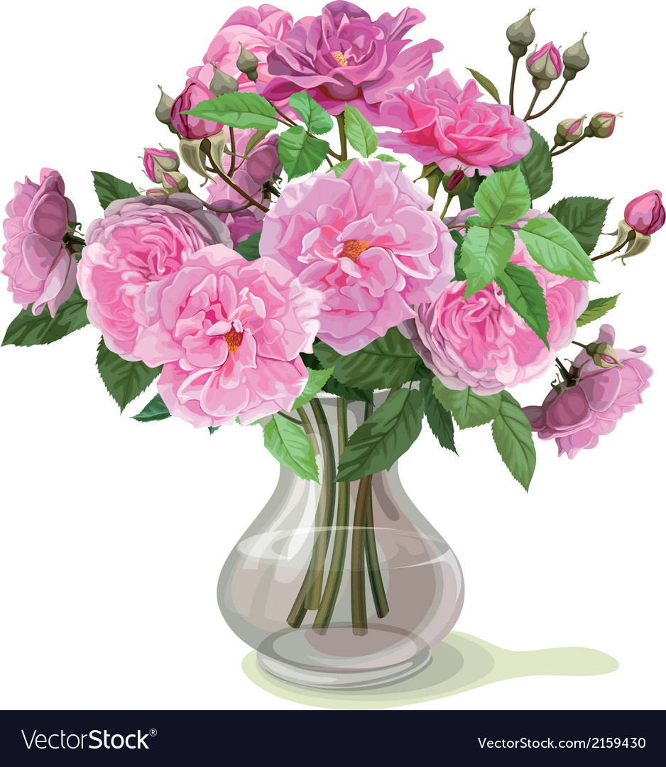 Bouquet of pink roses vector