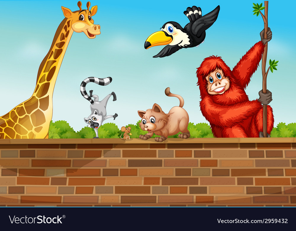 Animals and wall vector