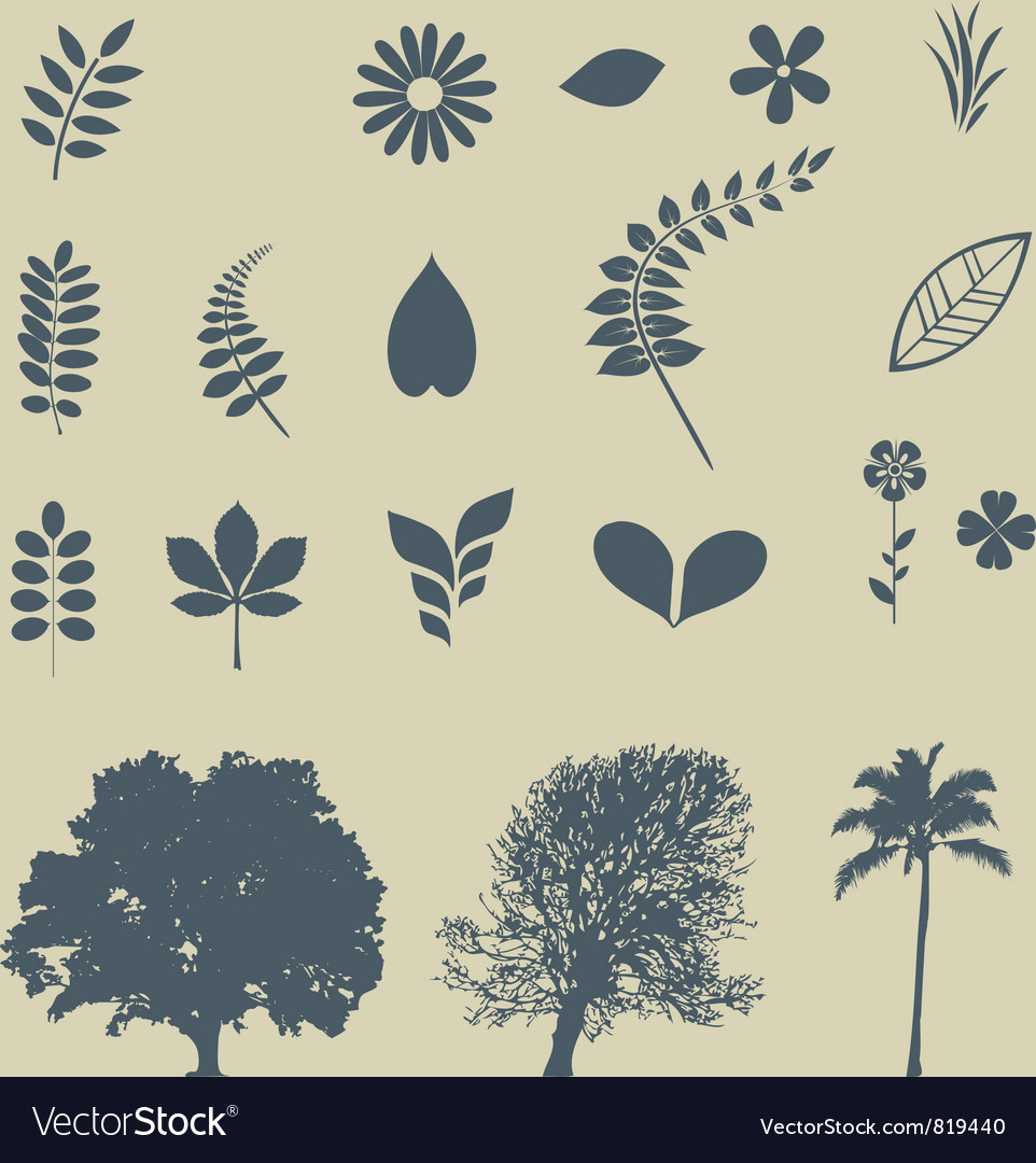 Leaves and trees vector