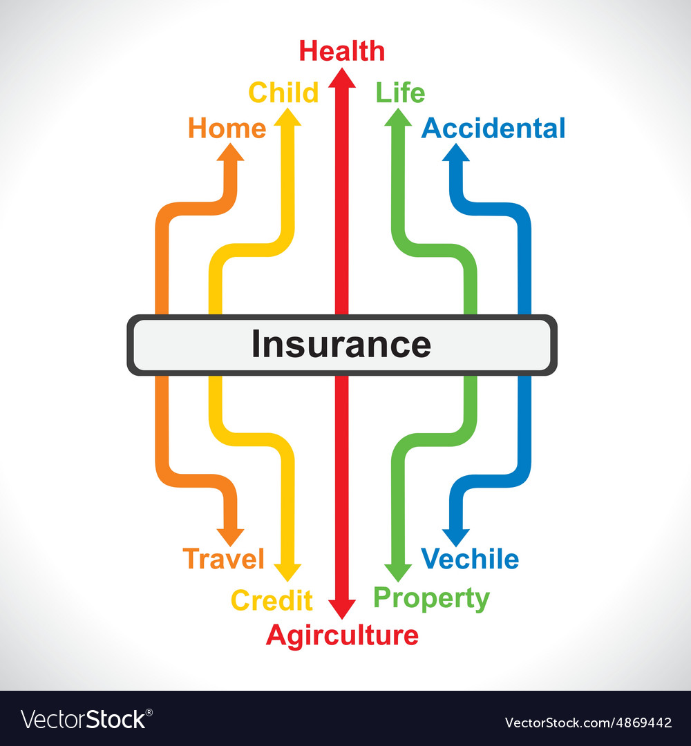 Infograph of insurance stock vector