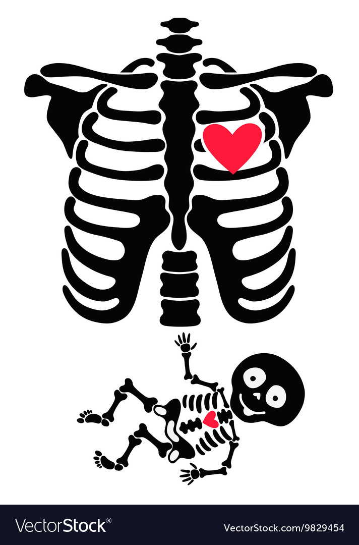 Pregnant funny skeletons mom and baby vector