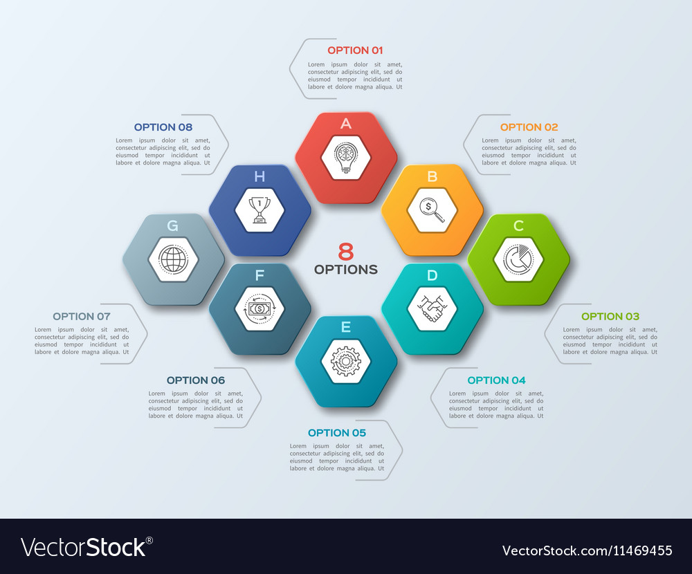 Infographic template with hexagons 8 options vector