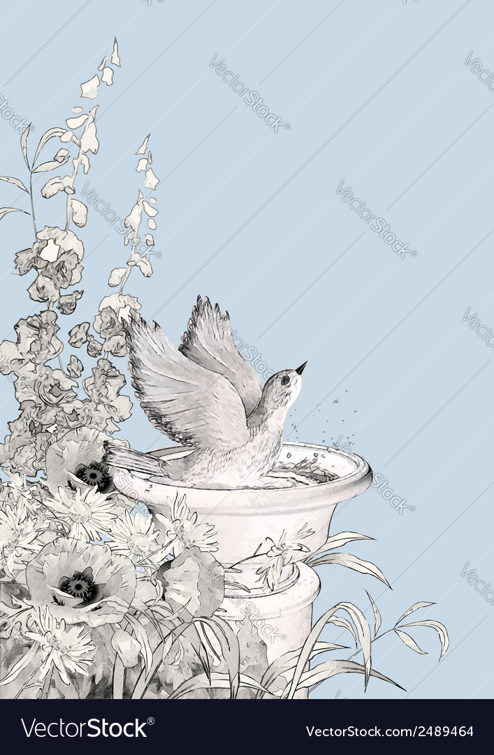 Bird bath sketch flowers vector